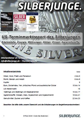 Terminmarktreport - Leseprobe